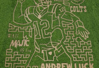 Amazing Fall Fun corn maze